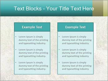 Computer screen PowerPoint Template - Slide 57