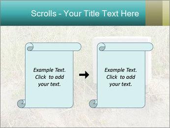 Computer screen PowerPoint Template - Slide 74
