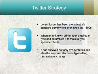 Computer screen PowerPoint Template - Slide 9
