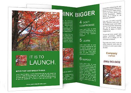 0000092780 Brochure Template