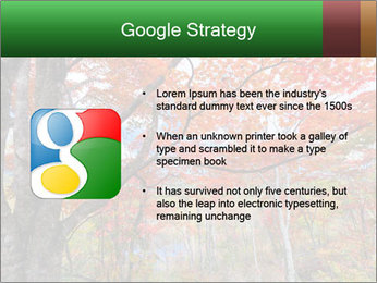 Forest PowerPoint Template - Slide 10