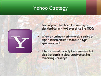 Forest PowerPoint Template - Slide 11