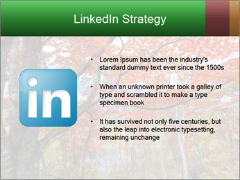 Forest PowerPoint Template - Slide 12