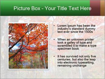 Forest PowerPoint Template - Slide 13