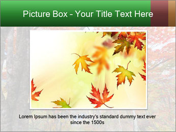 Forest PowerPoint Template - Slide 15