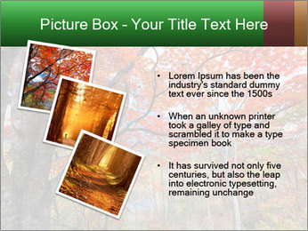 Forest PowerPoint Template - Slide 17