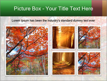 Forest PowerPoint Template - Slide 19