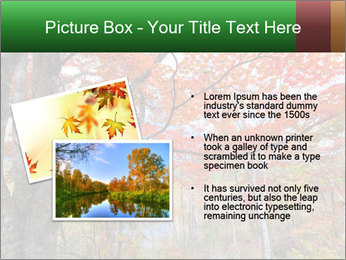 Forest PowerPoint Template - Slide 20