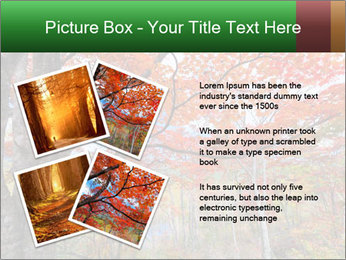 Forest PowerPoint Template - Slide 23