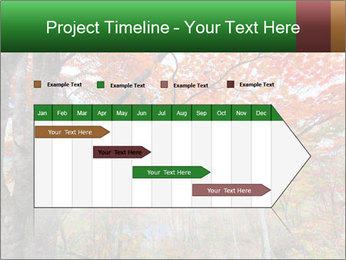 Forest PowerPoint Template - Slide 25