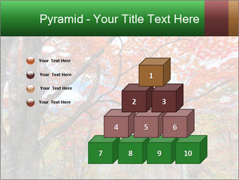 Forest PowerPoint Template - Slide 31