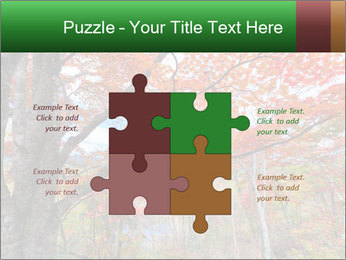 Forest PowerPoint Template - Slide 43