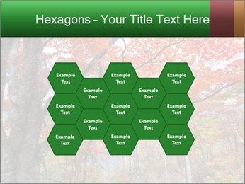 Forest PowerPoint Template - Slide 44