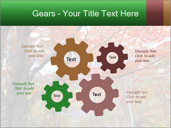 Forest PowerPoint Template - Slide 47