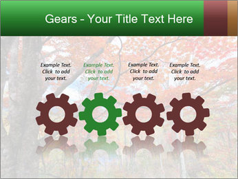 Forest PowerPoint Template - Slide 48