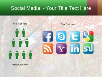Forest PowerPoint Template - Slide 5