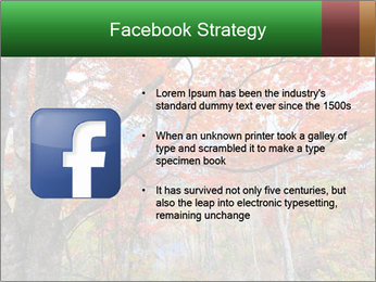 Forest PowerPoint Template - Slide 6
