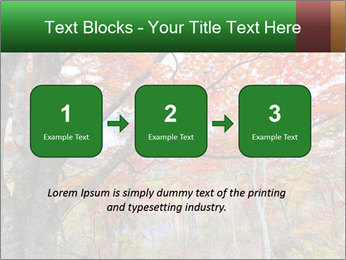 Forest PowerPoint Template - Slide 71