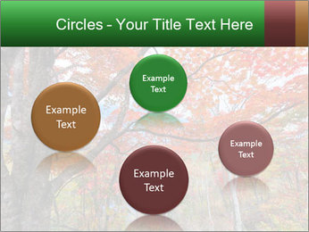 Forest PowerPoint Template - Slide 77