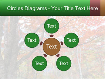 Forest PowerPoint Template - Slide 78