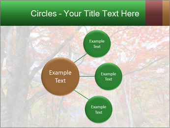 Forest PowerPoint Template - Slide 79