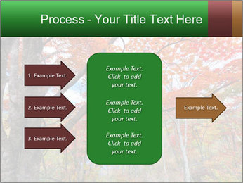 Forest PowerPoint Template - Slide 85