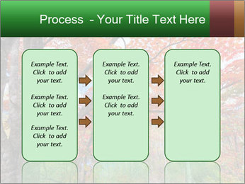 Forest PowerPoint Template - Slide 86
