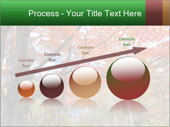 Forest PowerPoint Template - Slide 87