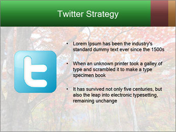 Forest PowerPoint Template - Slide 9