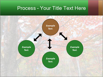 Forest PowerPoint Template - Slide 91