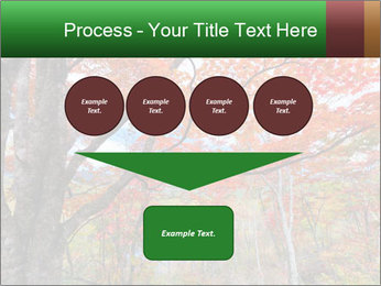 Forest PowerPoint Template - Slide 93