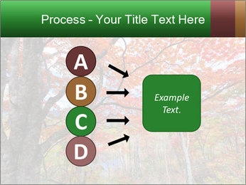 Forest PowerPoint Template - Slide 94