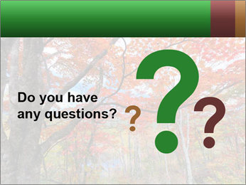 Forest PowerPoint Template - Slide 96