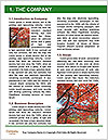 0000092780 Word Template - Page 3