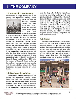 0000092781 Word Template - Page 3