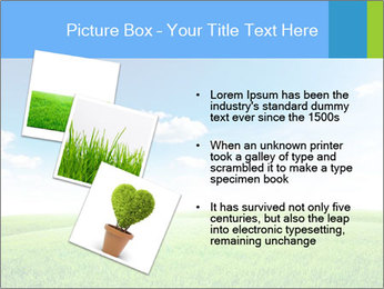 Green field PowerPoint Template - Slide 17