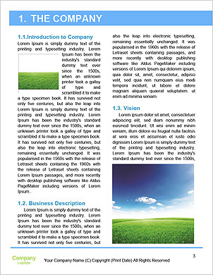 0000092782 Word Template - Page 3