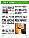 0000092784 Word Template - Page 3