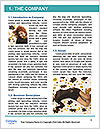 0000092789 Word Template - Page 3