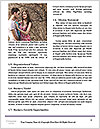 0000092791 Word Template - Page 4