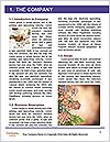 0000092792 Word Template - Page 3