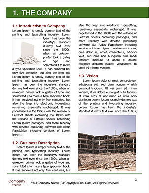 0000092797 Word Template - Page 3