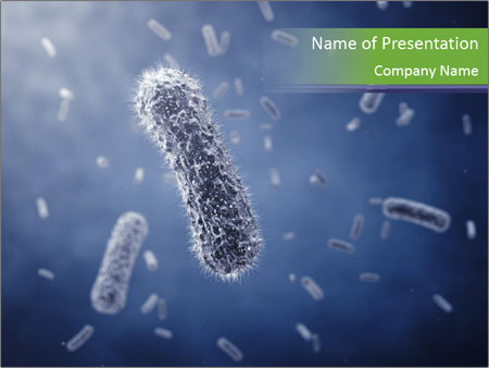 Rod-shaped bacteria PowerPoint Template
