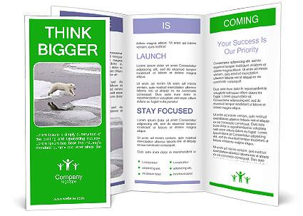 0000092804 Brochure Template