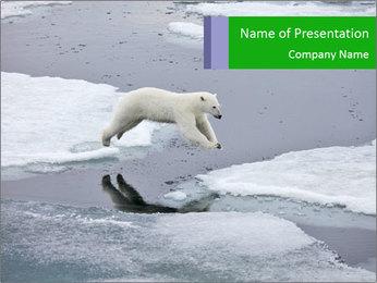 Polar bear PowerPoint Template - Slide 1