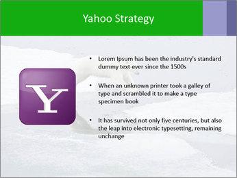 Polar bear PowerPoint Template - Slide 11
