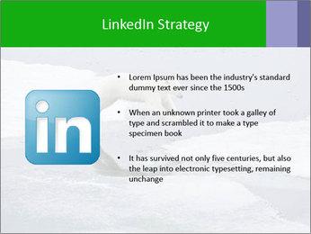 Polar bear PowerPoint Template - Slide 12