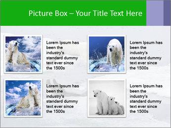 Polar bear PowerPoint Template - Slide 14