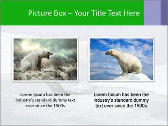 Polar bear PowerPoint Template - Slide 18