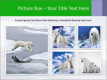 Polar bear PowerPoint Template - Slide 19